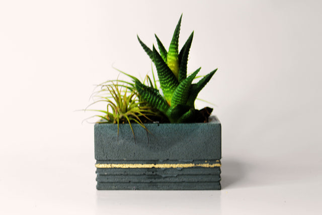 Concrete Textured Block Planter Short