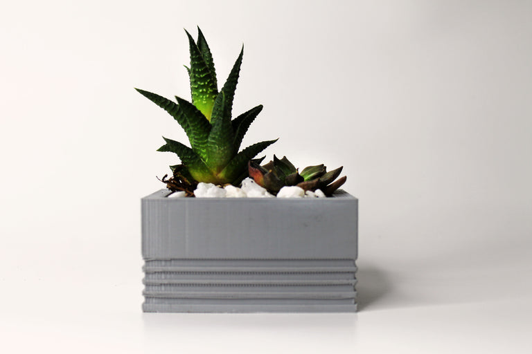 3D Printed Textured Block Planter Short