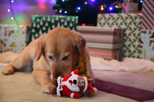 Santa Dog Squeaky Plush Dog Toy