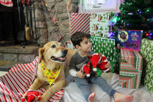 Load image into Gallery viewer, Santa Dog Plush Children's Toy