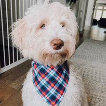 Load image into Gallery viewer, Candy Cane Lane Premium Flannel Bandana