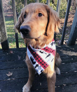 Bear-y Fall Bandana