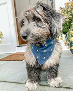 Denim Star Bandana