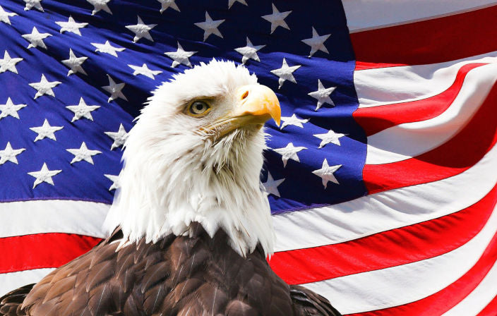 An American Eagle sits in front of a Giant American Flag