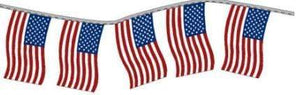 American Flags American Flag Poly Pennant Strings Pro Property Supply