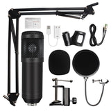 KaraokeJoeful Home Studio Mic - Desktop Mounted XLR and USB IO High Quality Condenser Microphone with mount, pop-screen and cables.