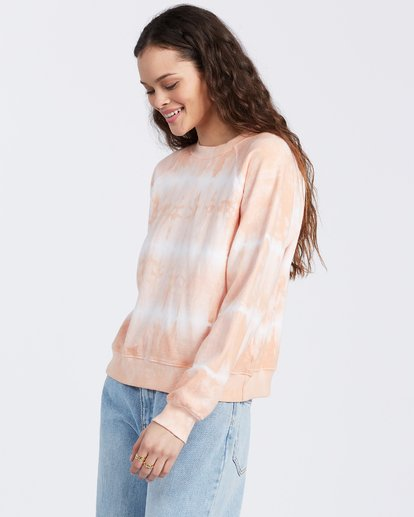 Sun Shrunk Sweatshirt in Dusty Melon