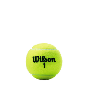 WILSON CHAMPIONSHIP REGULAR DUTY TENNIS CASE  |  24 cans  | 72 balls