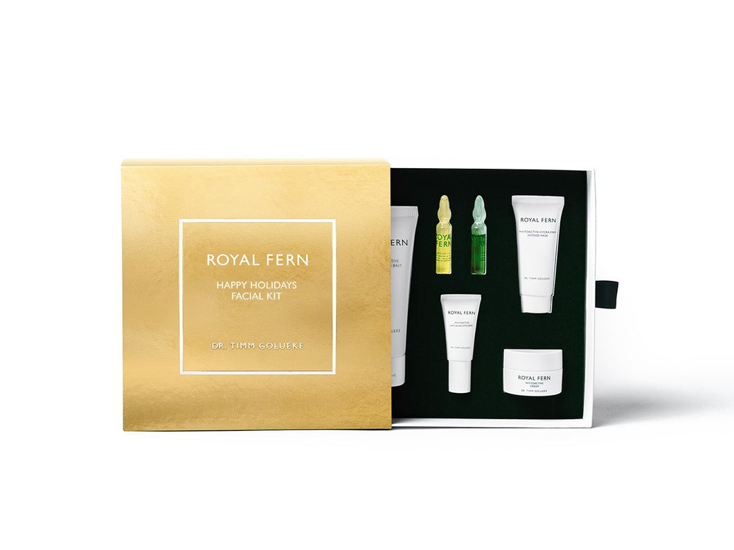 Happy Holidays Facial Kit
