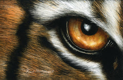 Tiger eye scratchboard drawing