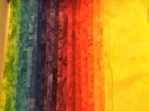 "(24) 2.5x42"" Rainbow Strips"