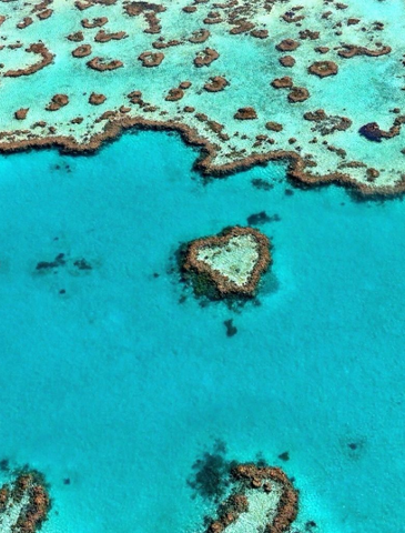 Heart Island Great Barrier Reef