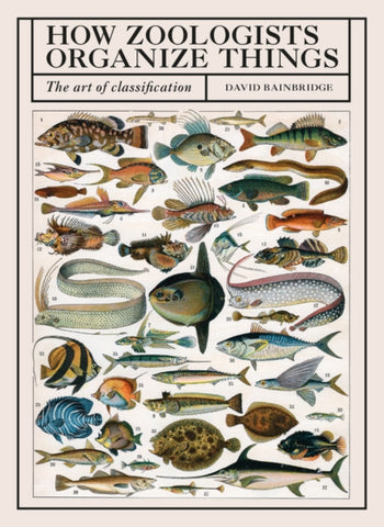 How Zoologists Organize Things : The Art of Classification