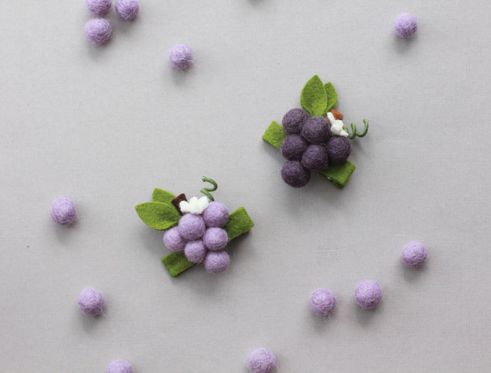 FARM FRESH || Concord Grapes Mini