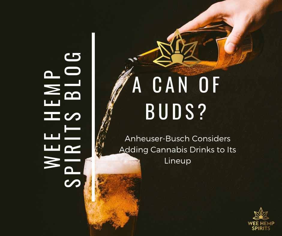 A Can of Buds? Anheuser-Busch Considering Adding Cannabis Drinks To It's Line-Up