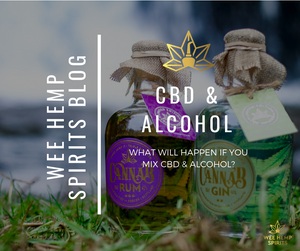 What Will Happen If You Mix CBD & Alcohol?