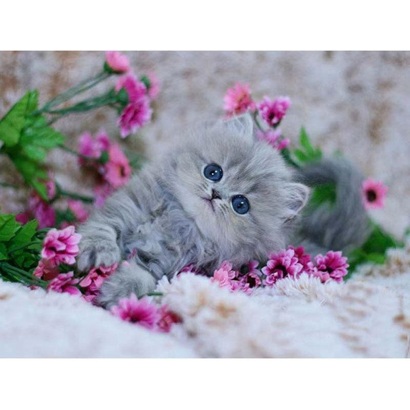 Cute Cat and pink flowers Diamond Painting Kit - DIY