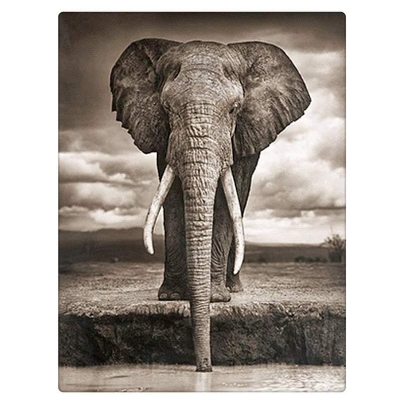 Drinking Elephant Diamond Painting Kit - DIY