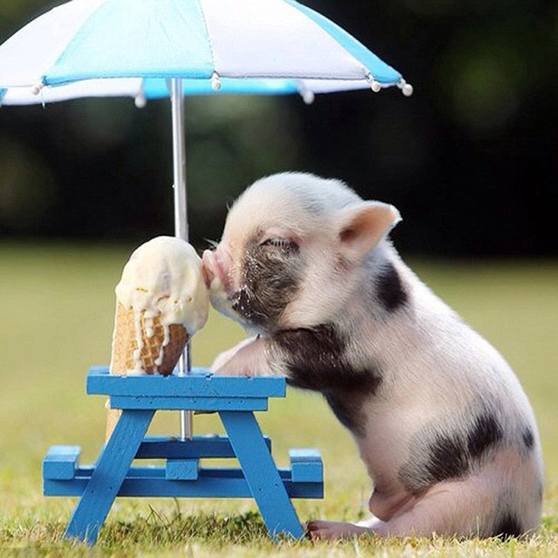 Pigs Eat Ice Cream Diamond Painting Kit - DIY