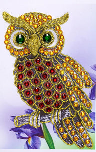 Owl Special Shapes Diamond Painting Kit - DIY