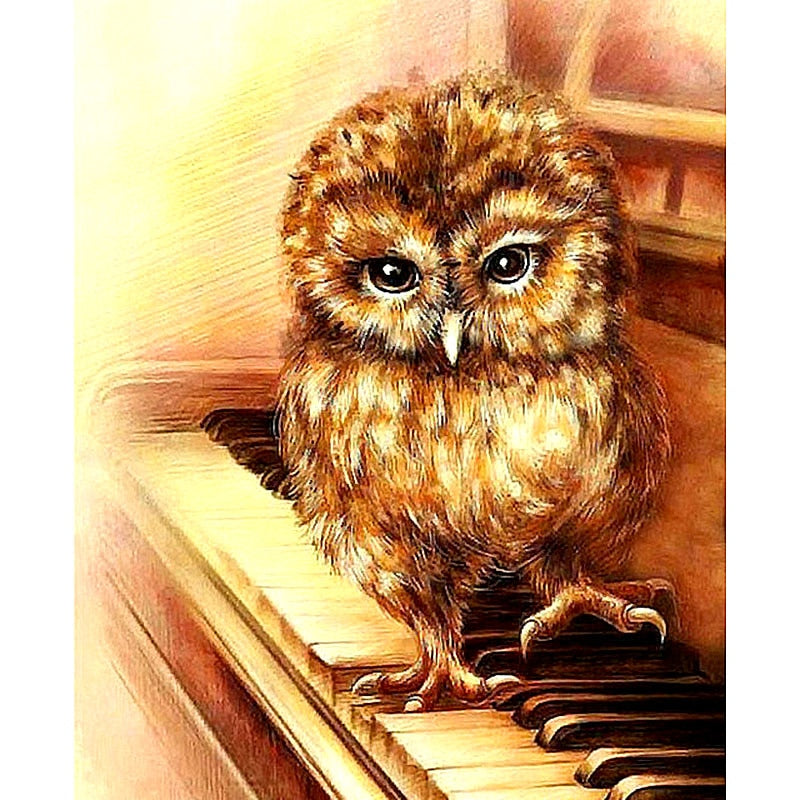 Owl Playing Piano Diamond Painting Kit - DIY