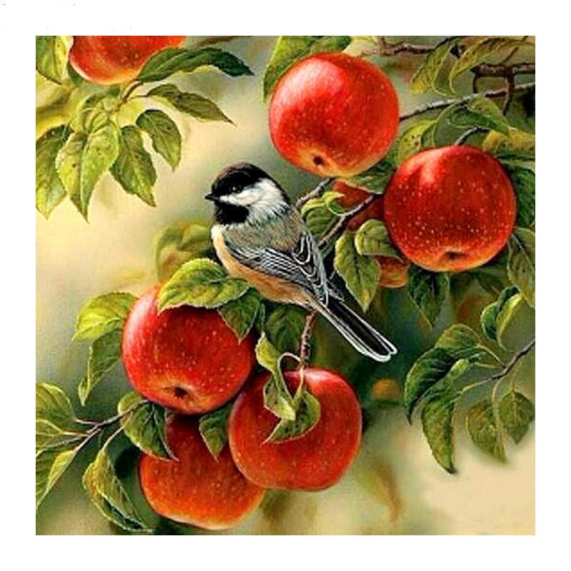 Bird In Apple Diamond Painting Kit - DIY