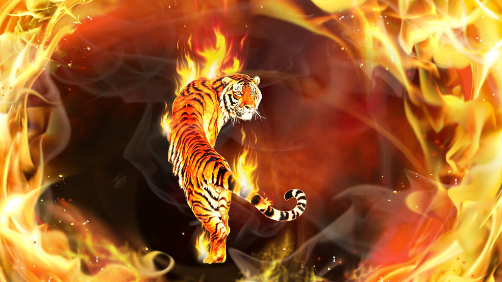 Tiger Fire Diamond Painting Kit - DIY