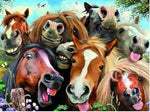 Horses Funny Diamond Painting Kit - DIY