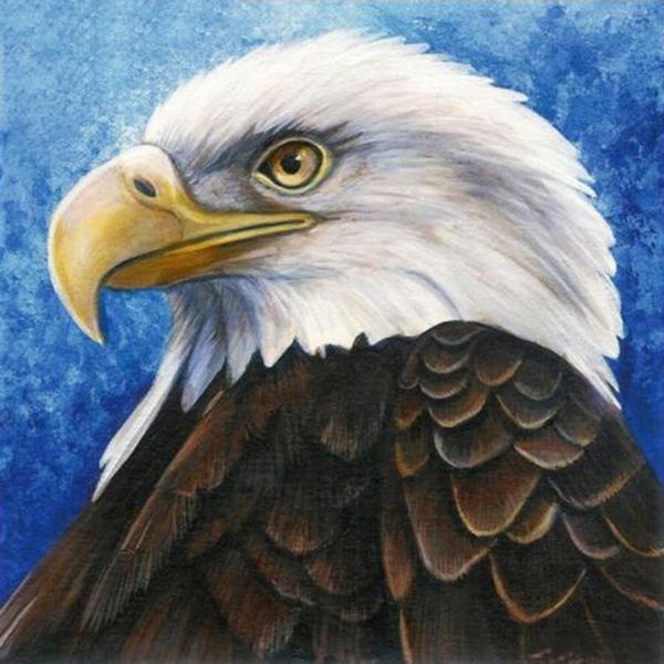 Eagle Calm Diamond Painting Kit - DIY