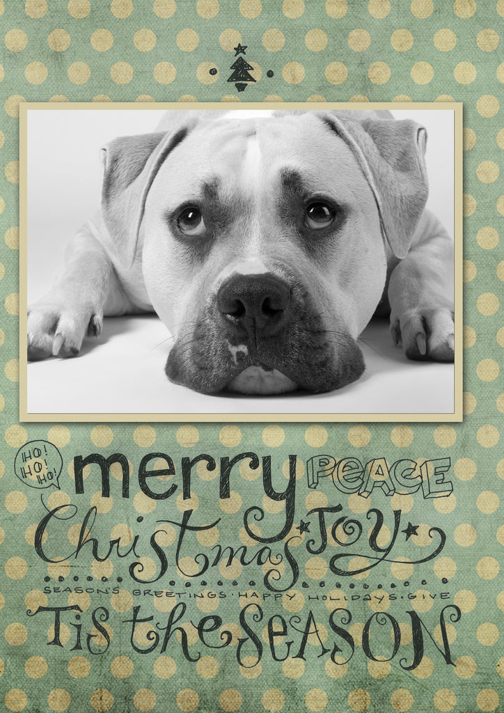 "Custom Christmas Card: MERRY - POLKA DOT FABRIC - 5""x7"" folded vertical"