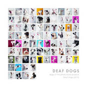 "Deaf Dog Collage Print, square - 8""x8"" (color)"