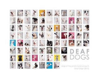Deaf Dog Collage Print - 20x16 (color or b&w)