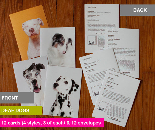 """Dogs of the Photo Book Projects"" Notecards"