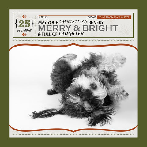 "Custom Christmas Card: MERRY & BRIGHT - 5""x5"" flat"