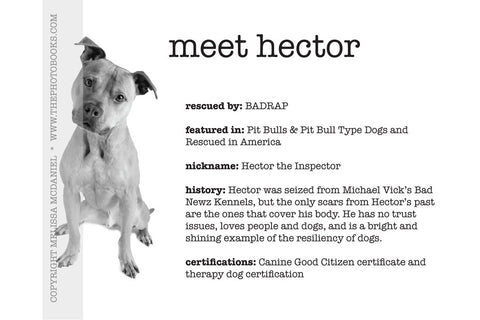 Meet Hector - Limited Edition Print