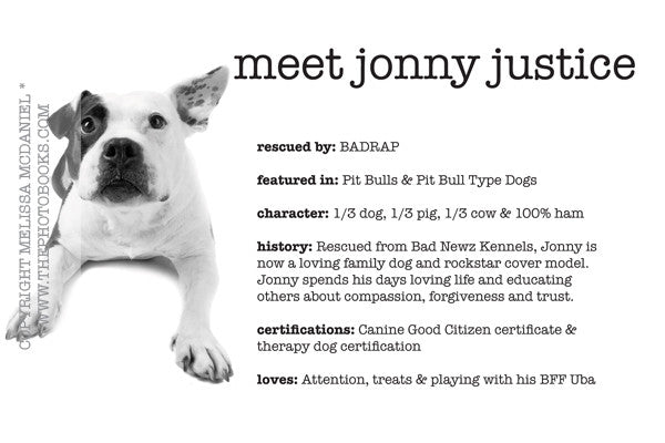 Meet Jonny Justice - Limited Edition Print