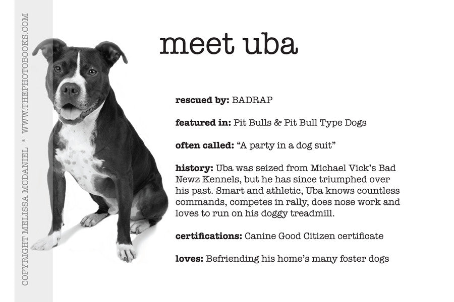 Meet Uba - Limited Edition Print