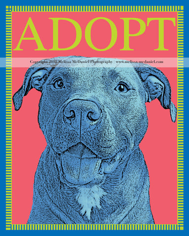 "ADOPT Rescue Dog Print, 8""x10"" metallic print"