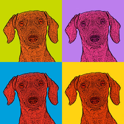 Pop Art Dachshunds - 12x12 Metallic Print