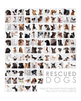 Rescued Dog Collage Print - 16x20 (color or b&w)