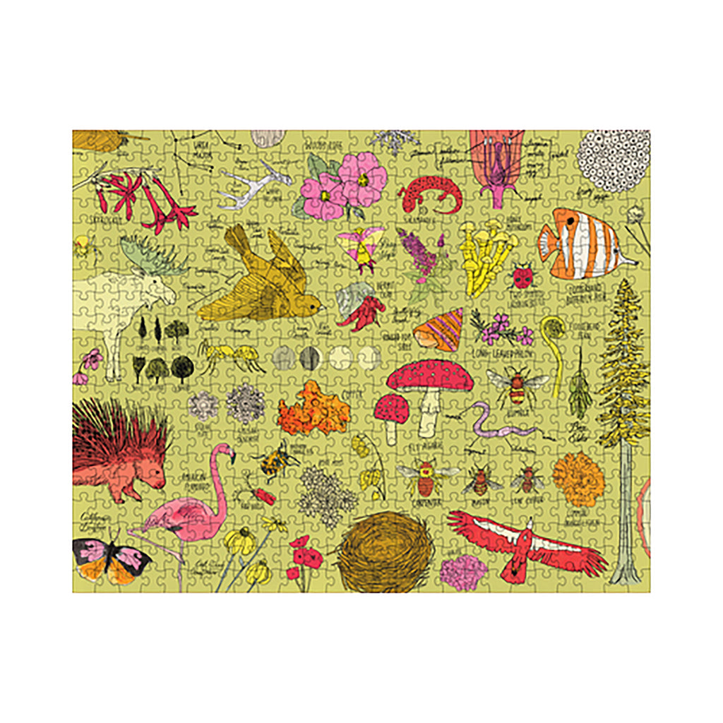 500 Piece Julia Rothman Nature Anatomy Jigsaw Puzzle