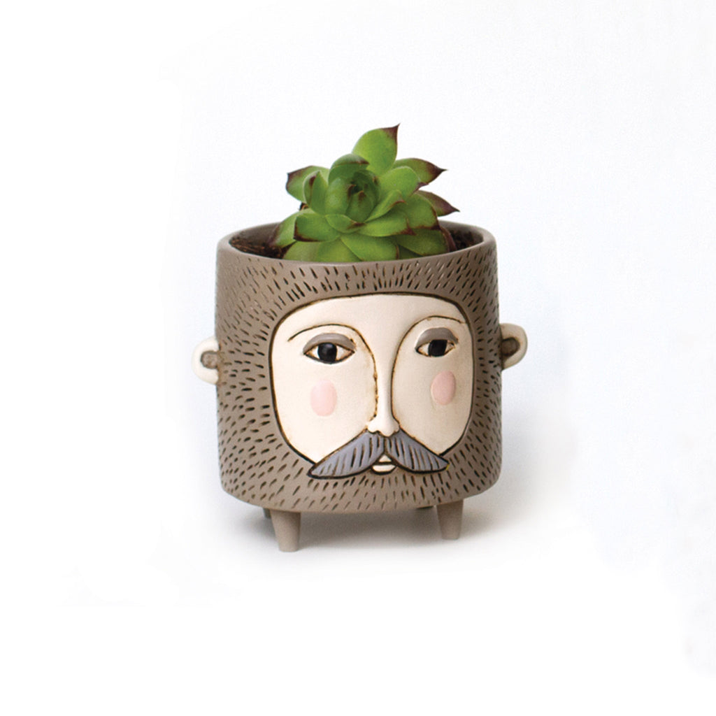 allen designs baby hairy jack indoor decorative planter with succulent