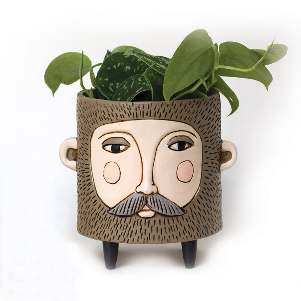 allen designs hairy jack bearded man indoor decorative planter with houseplant