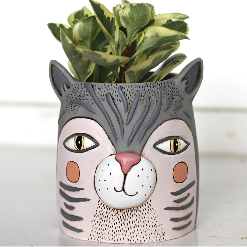 fat cat planter with plant