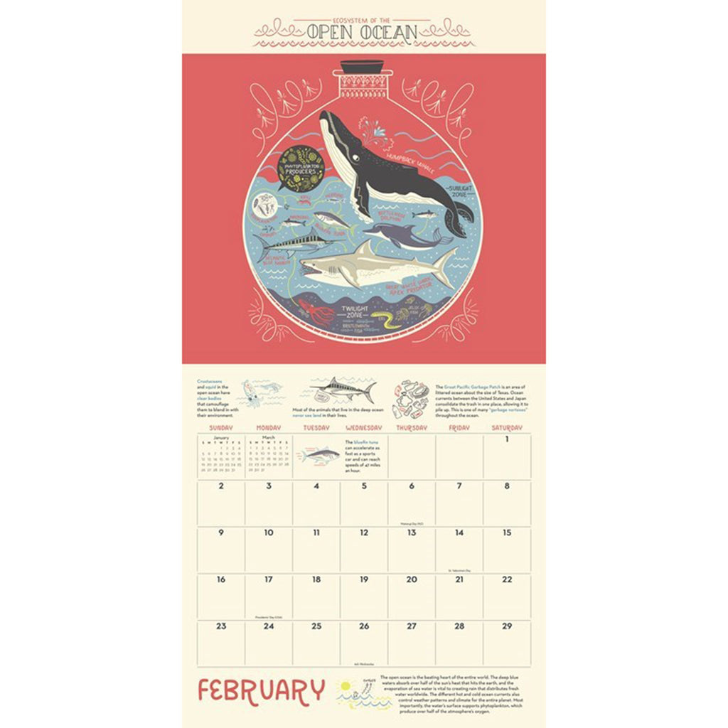 2020 the wondrous workings of planet earth monthly wall calendar february