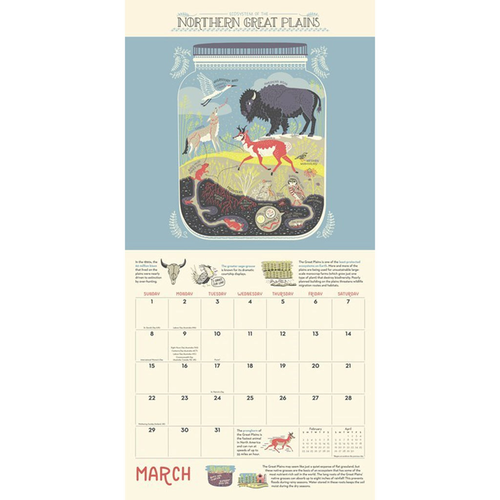 2020 the wondrous workings of planet earth monthly wall calendar march