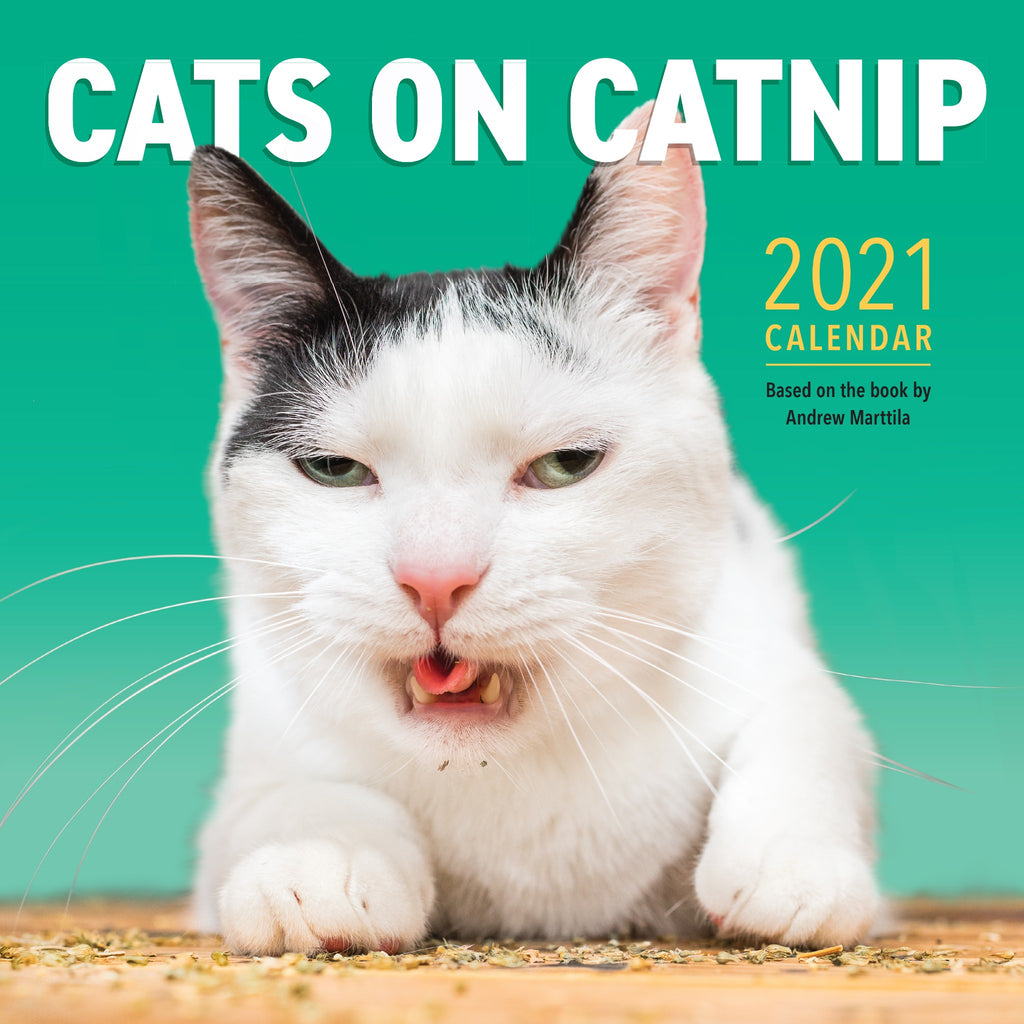 cats on catnip calendar cover with a photograph of a black and white cat eating catnip with its mouth open