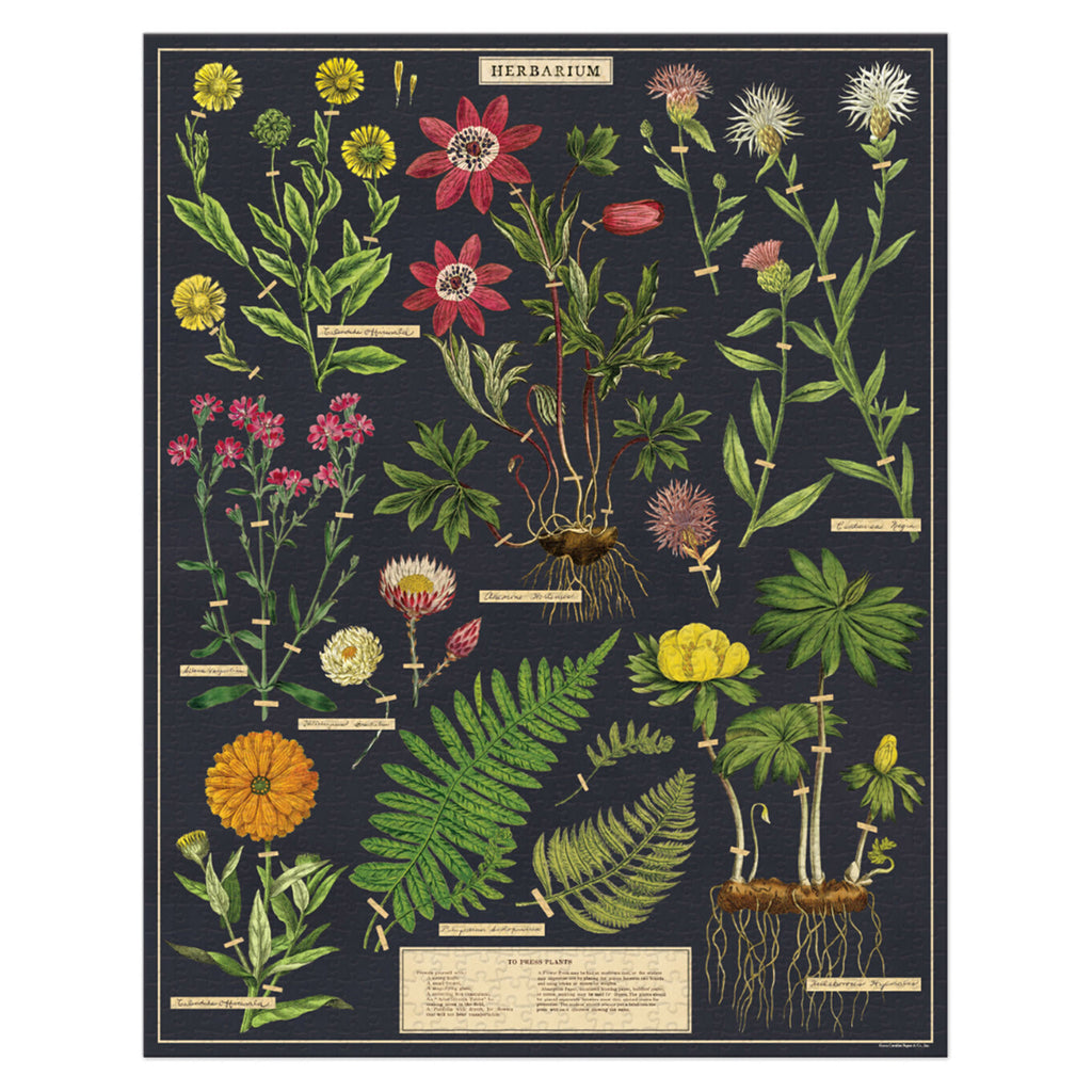 cavallini 1000 piece herbarium vintage illustration family jigsaw puzzle completed