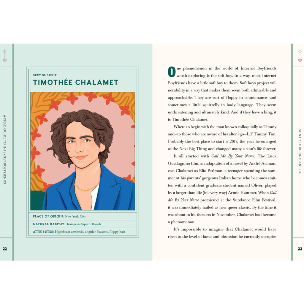 detail page with illustration of timothee chalamet opposite an essay