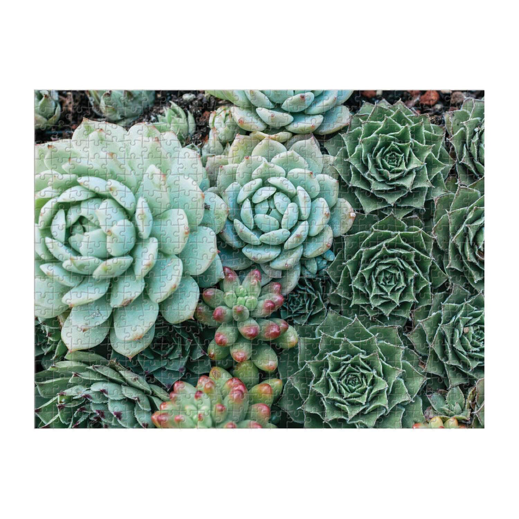 galison 500 piece double sided succulent garden jigsaw puzzle box side one complete